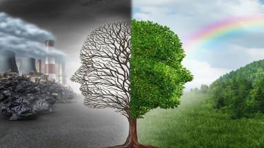 пути развития человечества