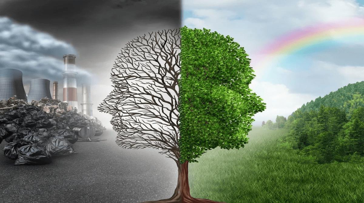2 пути развития человечества: техногенный и природный | Расшифровка понятий